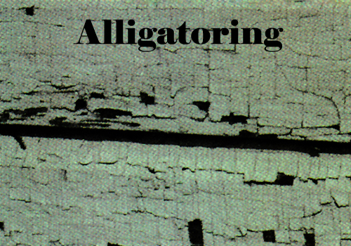 Alligatoring