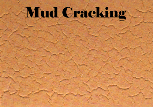 Mud Cracking